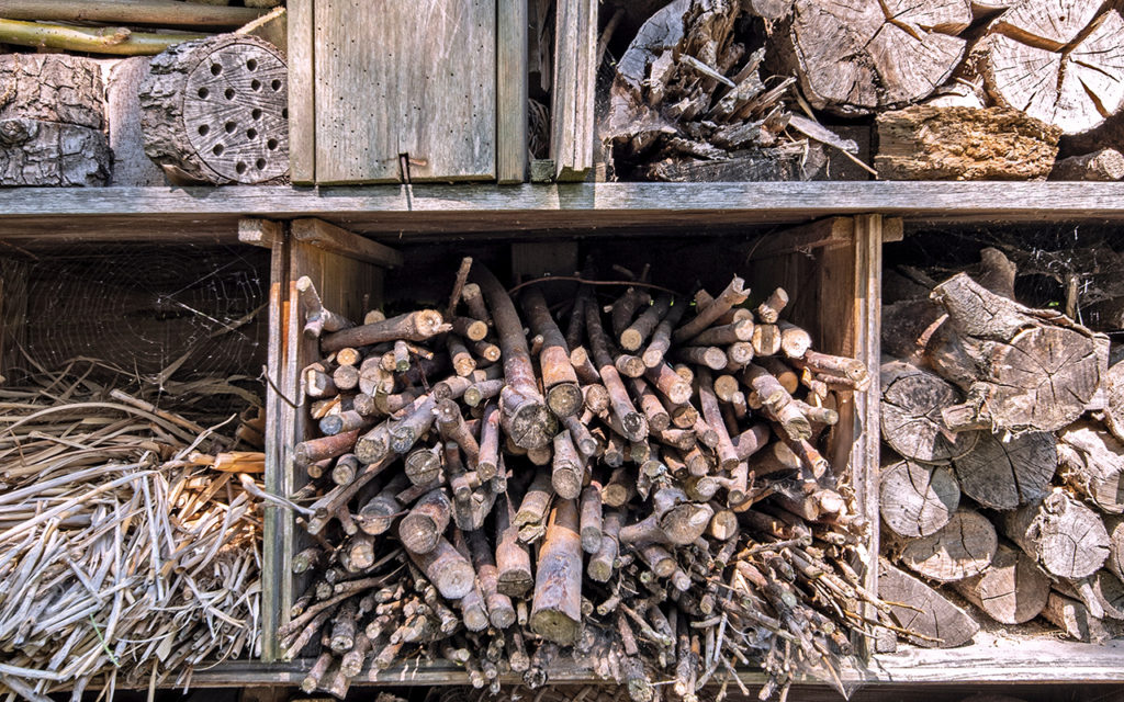 Various wooden barks, tree stumps and materials for a bee hotel.